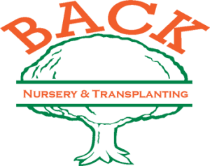 back nursery logo