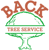 Back Tree Service